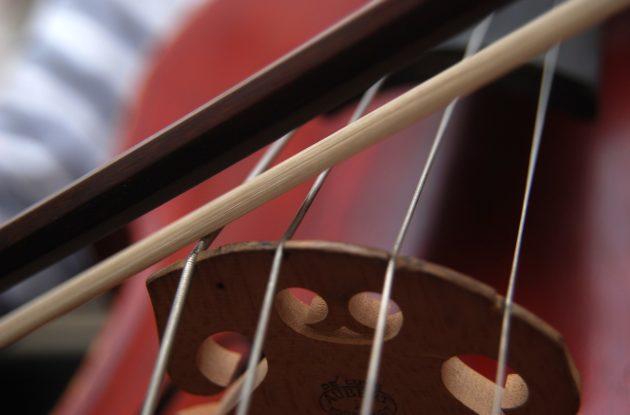 Musikk og kulturskole med kurstilbud og musikktimer for alle nivåer og aldre, orkestertilbud, cellokurs barn voksne Oslo Stavanger celloundervisning Bislett Majorstua cellolærer cellotimer celloundervisning cello kurs cellolæreren lær å spille cello barn lære å spille cello celloskole learn to play celo Oslo Stavanger cellokurs cellokurset cellokurs Bislett Oslo cellokurs Ruseløkka cellokurs sentrum, strykeorkester, strykeorkesteret, strykeorkester voksne, strykeorkester nybegynnere, strykeorkester unge, strykeorkester amatør, strykeorkester