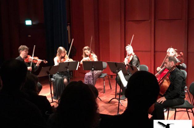Kolibri Fiolin voksne elever på Konserthus konsert med Min ensemblet fiolintimer fiolinlærer fiolinkonsert fiolinskole