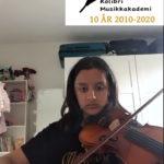 Raha fiolin